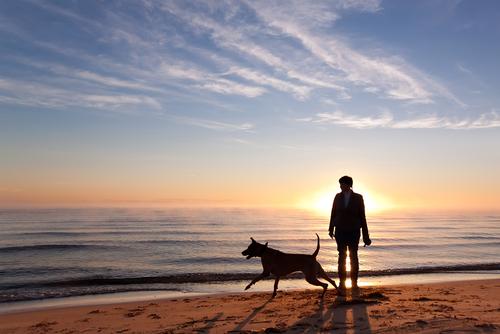 Dog-Friendly Weekend Getaways