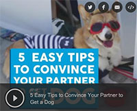 5 Easy Tips to Convince Your Partner to Adopt a Dog