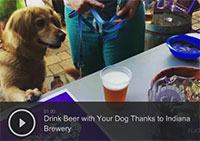 Drink Beer with Your Dog Thanks to Indiana Brewery