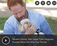 'Modern Family' Star Jesse Tyler Ferguson Adopts Dog