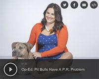 Pit Bulls Have A P.R. Problem