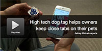 high-tech-dog-tag-lets-owners-keep-close-tabs-on-their-pets
