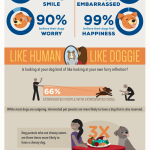 Study Shows Why You Picked Your Dog