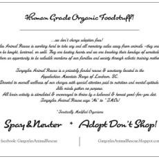 Gargoyles Post card back