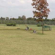 Enid Dog Park in Enid OK - Crosslin dog park