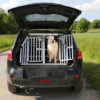 Safety First: Preparing For a Dog-Friendly Road Trip