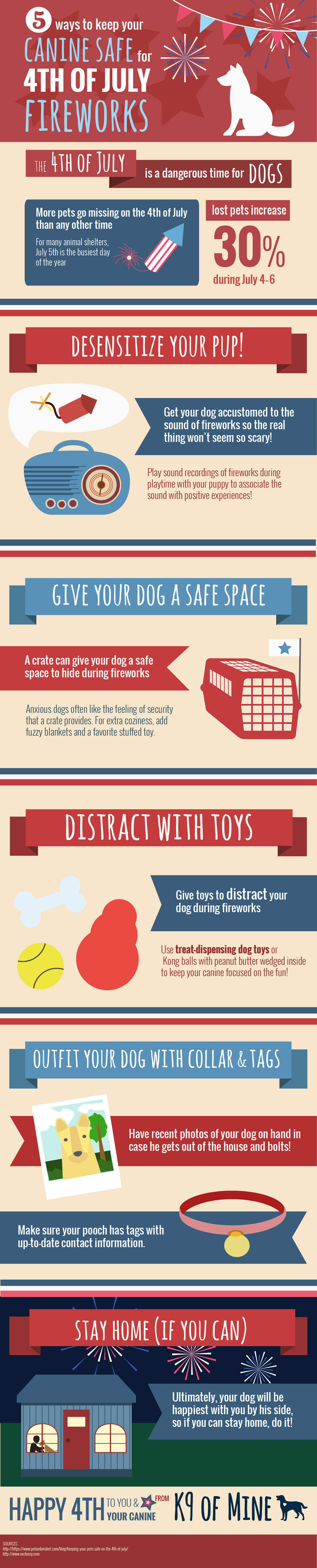 dog and fireworks infographic