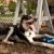 Palmer Doggie Depot Dog Park in Philadelphia, PA