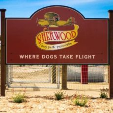 Sherwood Dog Park in Paso Robles, CA