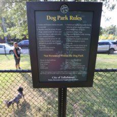 Boulevard Park Dog Park in Tallahassee, FL