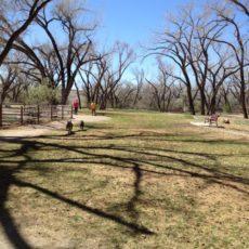 Westland Dog Park in Farmington, New Mexico