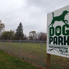 William Grace Dog Park in Farmington Hills, MI
