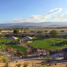 University Dog Park in Palm Desert Ca