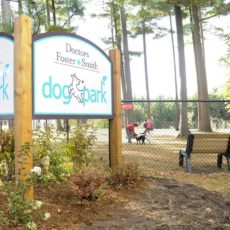 Doctors Foster Smith Dog Park in Shepard Park Rhinelander WI