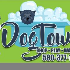 DogTown-in-Woodward-OK.jpg