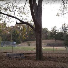 Starkville Dog Park in Moncrief Park - Dog Park in Starkville MS