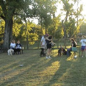 Shelby Dog Park Nashville, TN