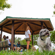 Dog Park at Lake Ida in Delray Beach FL