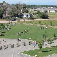 Freedom Park Dog Park