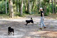 Gemini Springs Park Dog Park in DeBary FL