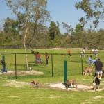 Keysville, FL Dog Park