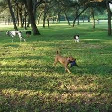 Niceville Dog Park in Niceville, FL