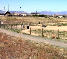 Rover's Run Dog Park in Littleton, CO