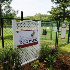 Friends-of-Murphysboro-Dog-Park.jpg