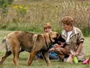 Mayslake Dog Park in Oak Brook, IL