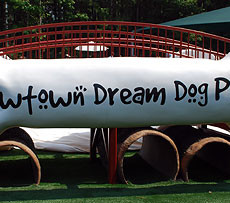 Newtown Dream Dog Park in Alpharetta GA