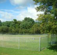 Waterville Area Dog Park