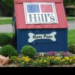 hills bark park