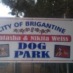 Brigantine, NJ Dog Park