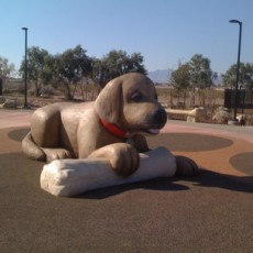 Desert Breeze Dog Park in Las Vegas NV