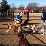 Liberty Dog Park, Liberty, MO