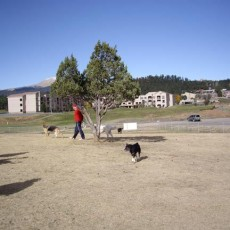 Ruidoso Dog Park in Ruidoso NM