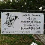 falmouth dog park