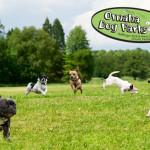 omaha dog parks