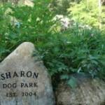 sharon dog park