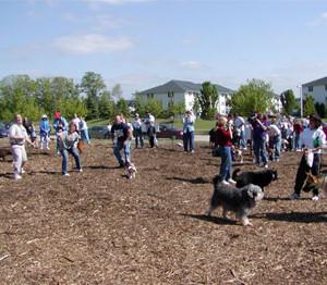 Brunswick Dog Park