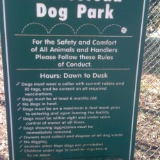 Homestead Dog Park in Chapel Hill NC