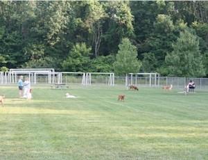 Oak Grove Dog Park