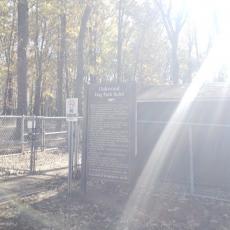 Oakwood Dog Park - Dog Park in Raleigh North Carolina