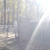 Oakwood Dog Park - Dog Park in Raleigh North Carolina