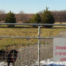Tom Harvey Memorial Dog Park