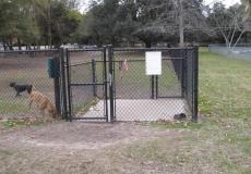 Ackerman Dog Park in Charleston SC