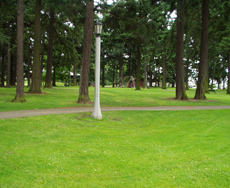 Alberta Park in Portland OR