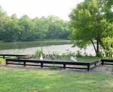 Leesburg Dog Park in Leesburg Virginia