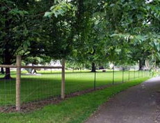 Wallace Park Dog Park