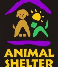 Animal Shelter Of Wood River Valley